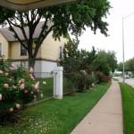 Arbors on Oakmont Outside Area