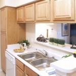 Lakes of Stone Glen Apartment Kitchen