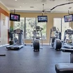 Orion at Oak Hill Apartment Fitness Center