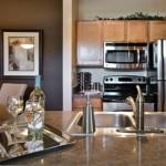 Orion-at-Oak-Hill-Apartment-Kitchen