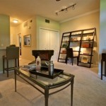 Orion at Oak Hill Apartment Model