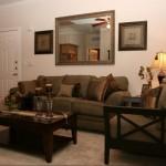 Park Creek Apartment Living Room.