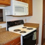 Raintree Apartment Dishwasher