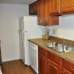 Raintree Apartment Kitchen