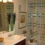 River Ranch Bathroom