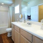 The Marquis at Stonegate Apartment Bath Room