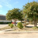 Elizabeth Gardens Fountain