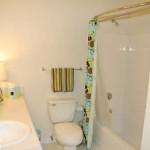 Indigo Pointe At Western Center Bathroom